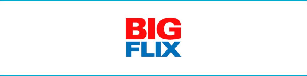 Big Flix Banner